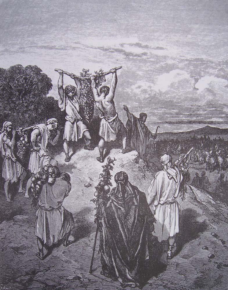 La Bible illustrée par Gustave Doré - Page 2 Gravur49