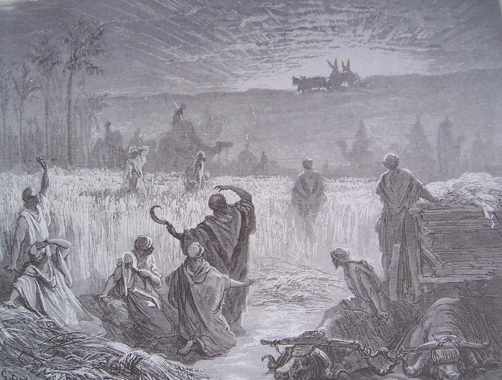 La Bible illustrée par Gustave Doré - Page 3 Gravur80