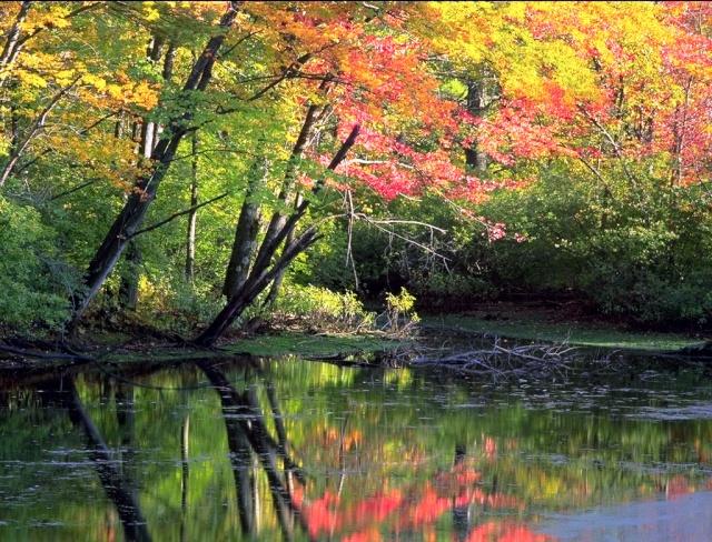 Spirit Lake RP Ayer-l10