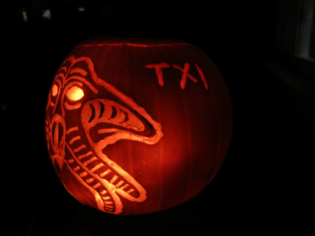 THE 3rd ANNUAL TXI STAR WARS PUMPKIN CARVING CONTEST Img_2220