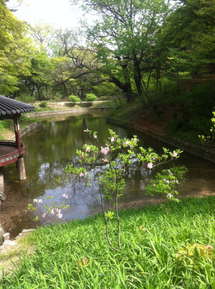 The Secret Garden (Séoul) The_se15