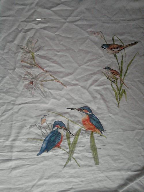 rideau  d'oiseaux P1511111