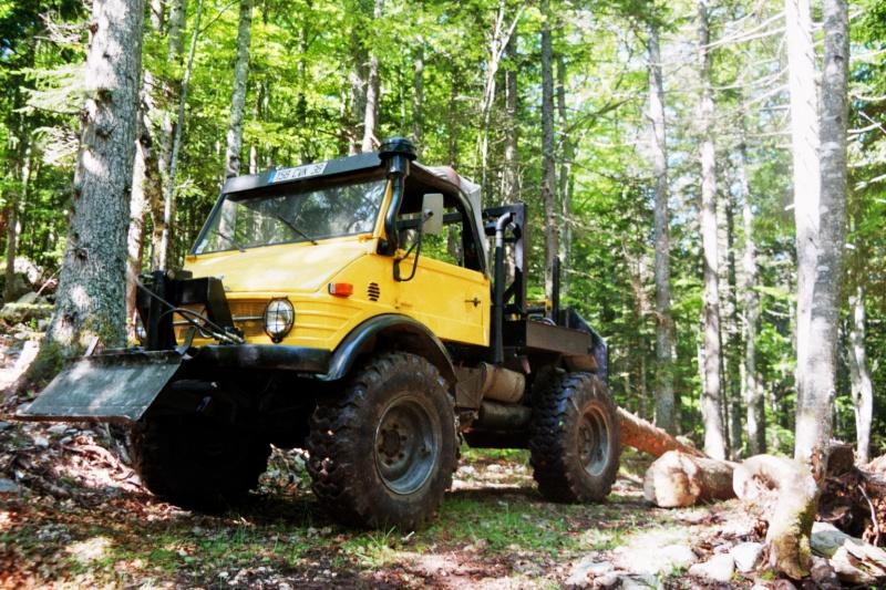 unimog mb-trac wf-trac pour utilisation forestière dans le monde - Page 19 Imm00910