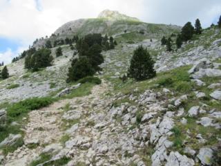 Les Hauts Plateaux selon Ubaye Img_1219
