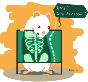 """Débat nr 5: """"Les rats handicapés"""" Captur10"""