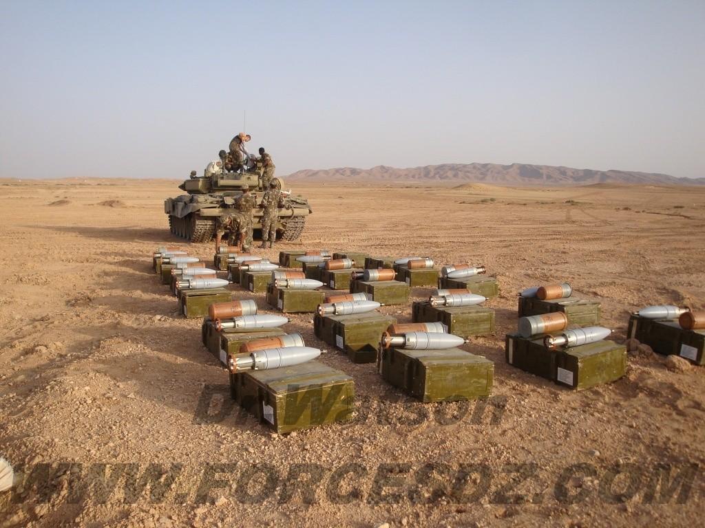 Argelia T9000010