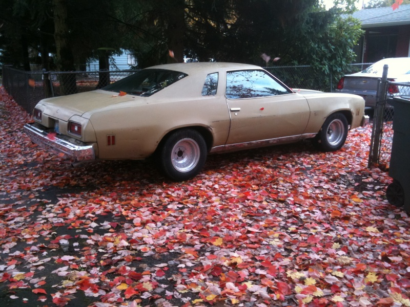 New 1974  Malibu Classic owner in Seattle Nov_3r12