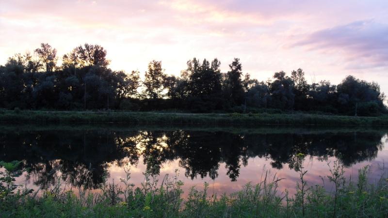 paysages divers de cette année  Sdc13411