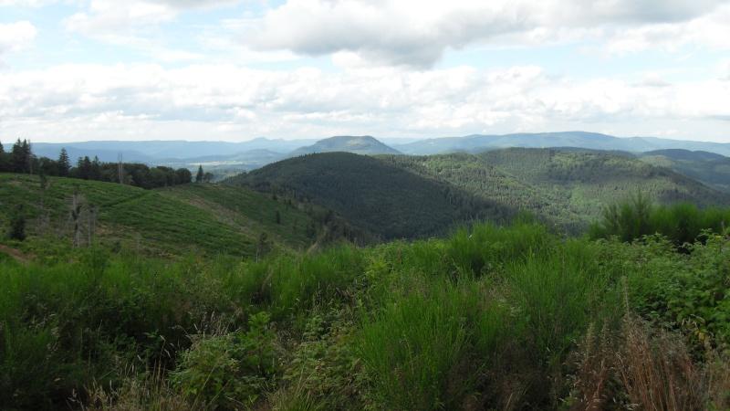 paysages divers de cette année  Sdc13510