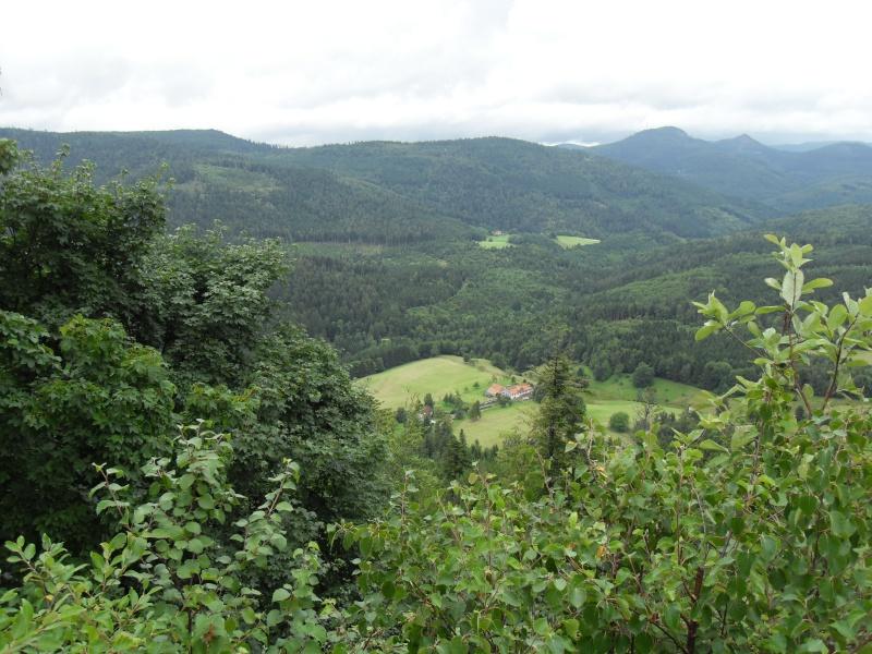 paysages divers de cette année  Sdc13511