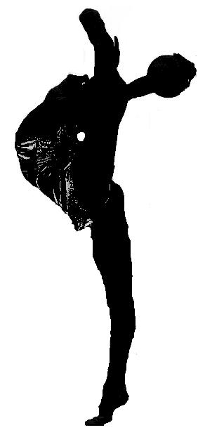 Nouveau : Jeu de silhouette - Page 5 Silhou11