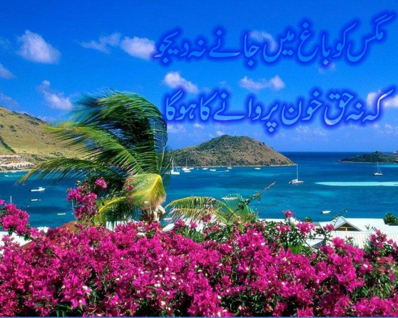 Shoraa Karram Ka Qallam E Khaas E10