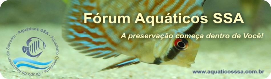Aquáticos SSA Banner16