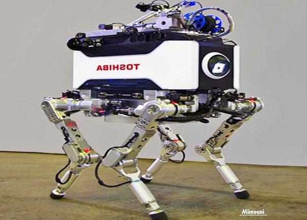 Mimouni Chtoukapress Actions Robot_10