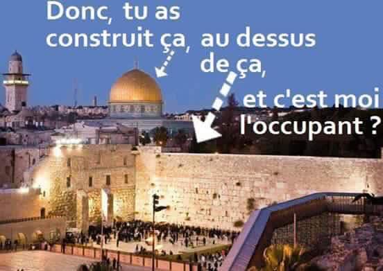 Nouvelles de Palestine et d'Israël - Page 5 28166510