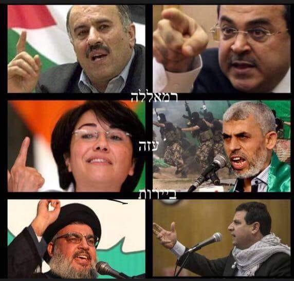 Nouvelles de Palestine et d'Israël - Page 5 40152210