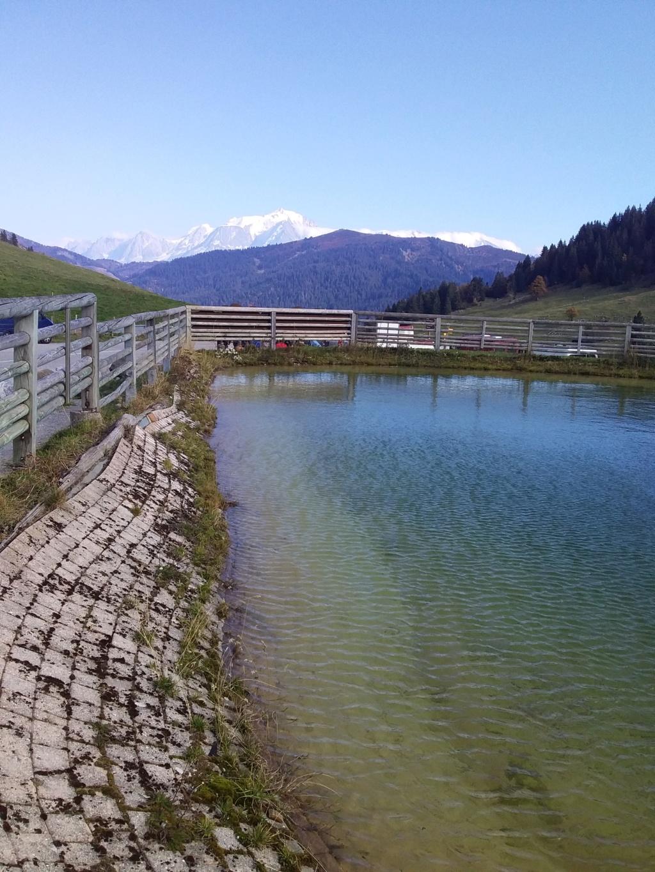 Alpine 2018 infos et inscription - Page 2 23010