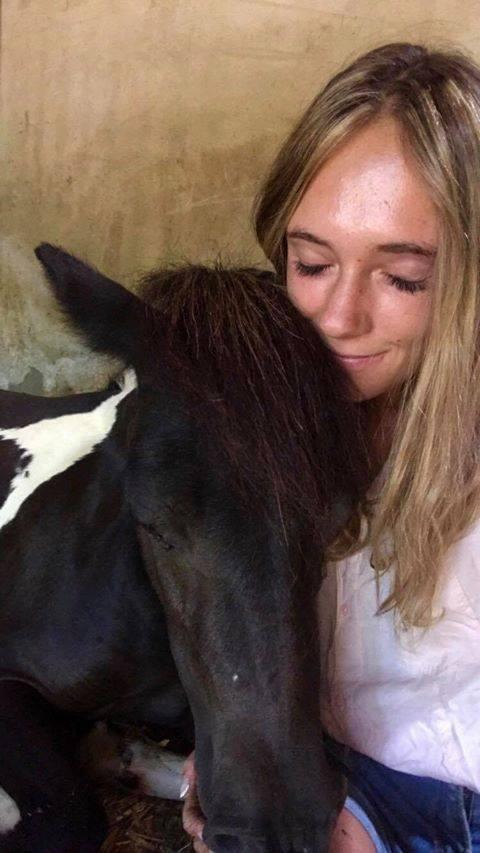 (dept 71) 2 ans - GRIOTTE - onc poney - jument -Réservée par Victoire B (mars 2018) 37722810