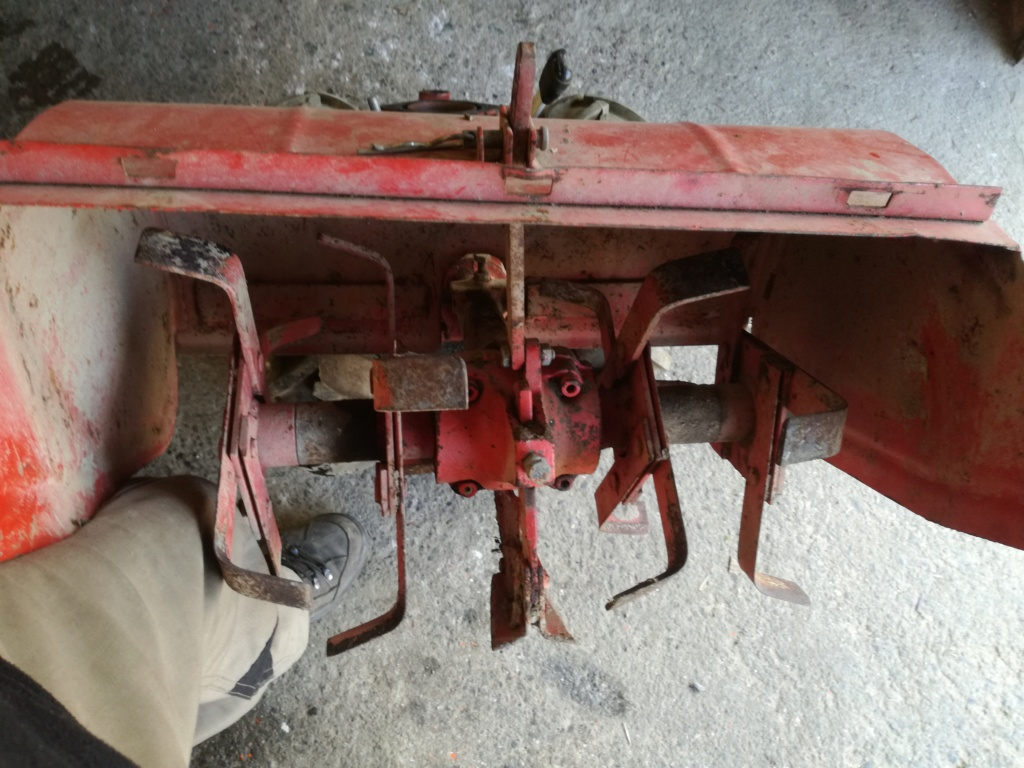restauration - Restauration d un Motostandard avec Roto  Img_2268