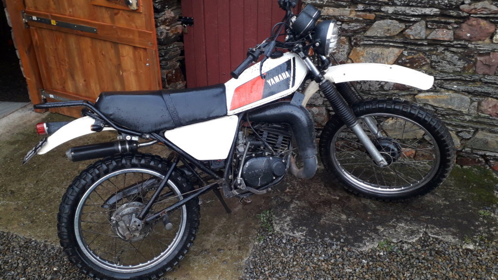 Restauration DTMX 125 par Julien  20190211