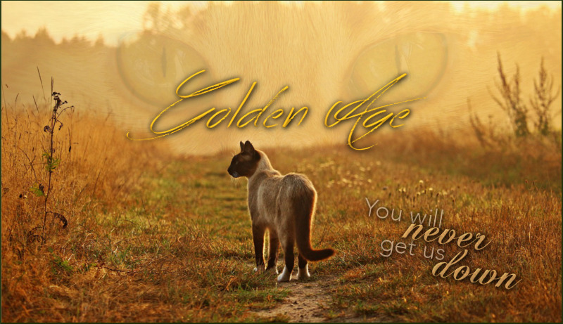 Golden Age - You will never get us down