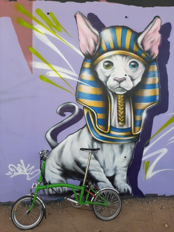 Street Art - Page 6 20210327