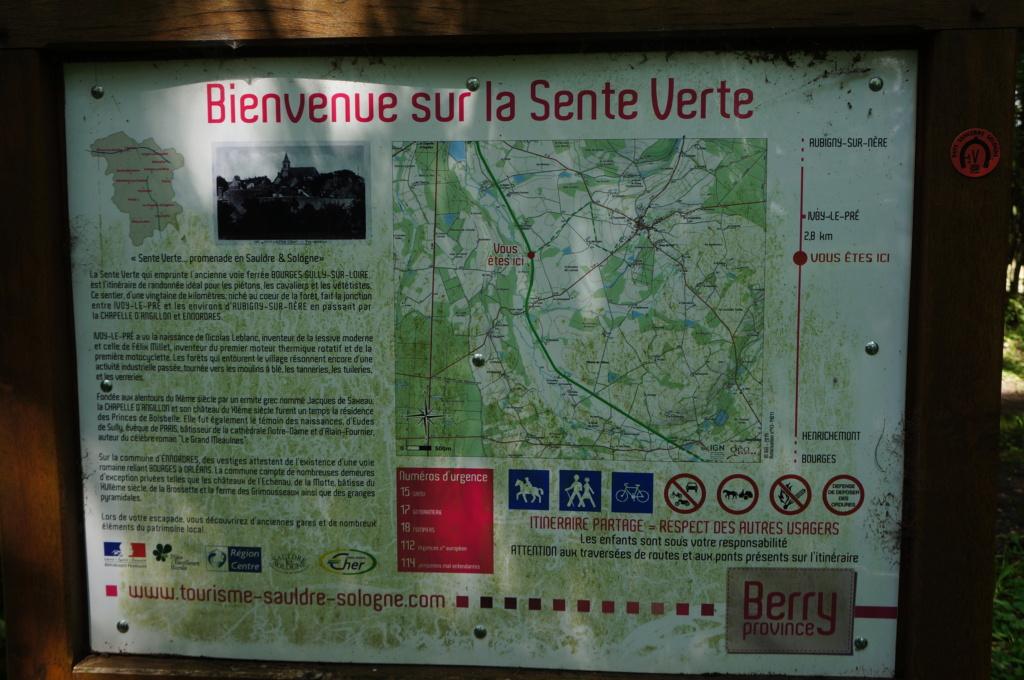 Méridienne verte (V48) - Balade champêtre en Berry-Sologne Dsc07938