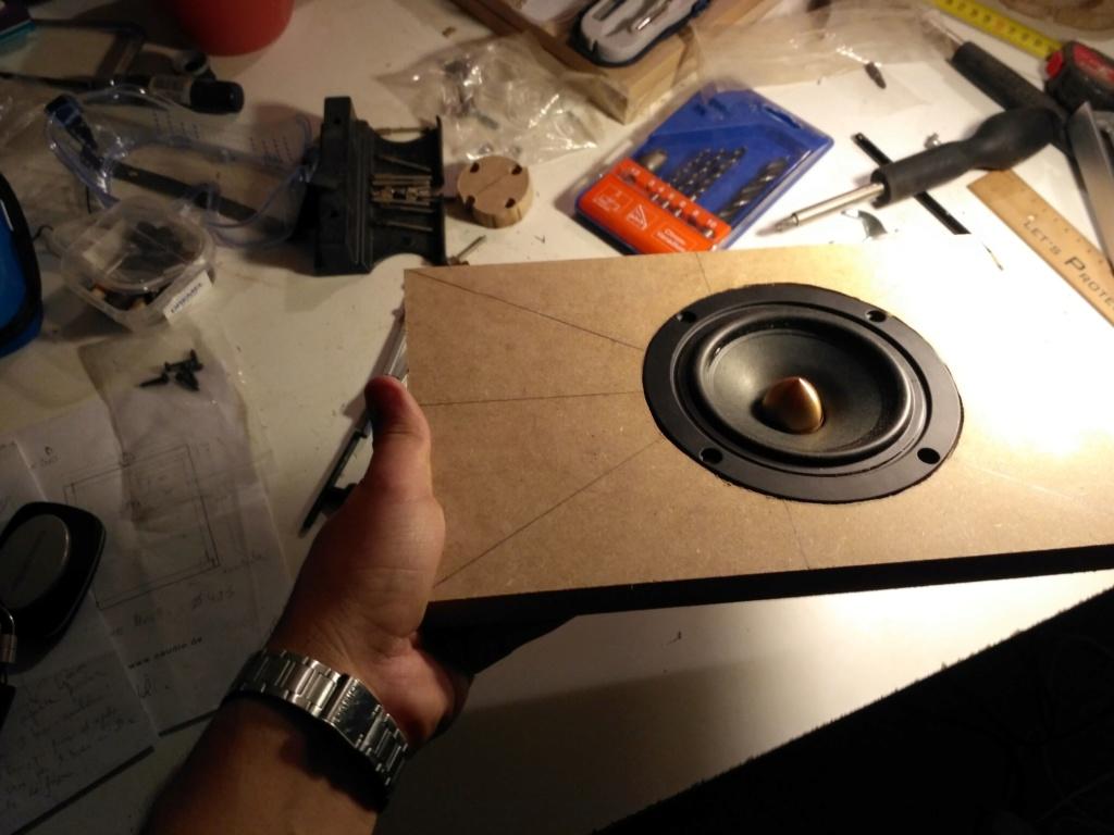 DIY diffusori: partenza da zero - Pagina 2 Img_2010