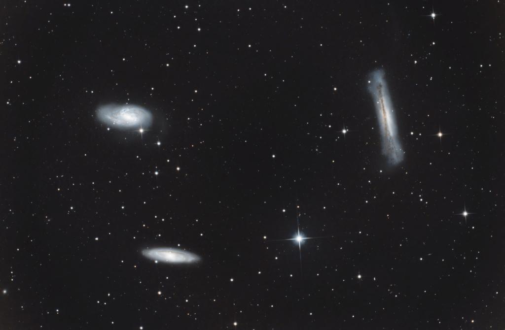Le triplet du Lion NGC3628 M66 et M65 Le_tri10