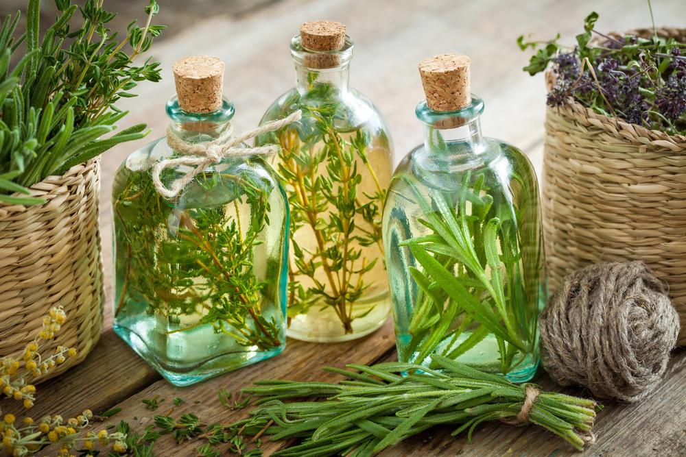 картинки с травами адаптогенами