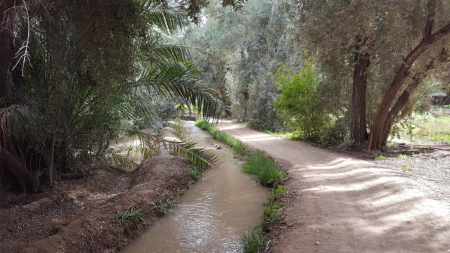 [Maroc Camp/Dernières nouvelles] confinement camping  Hakkou à Aoufous  20200351