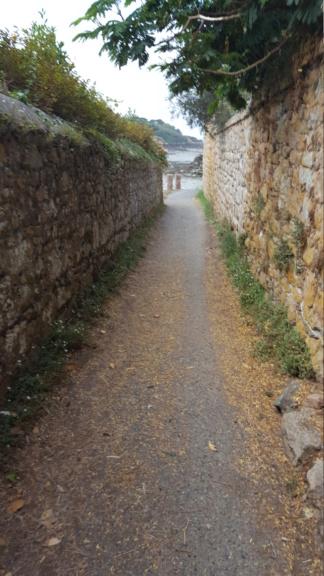 [Autres voyages/France] Balades en Bretagne - Page 3 20200922