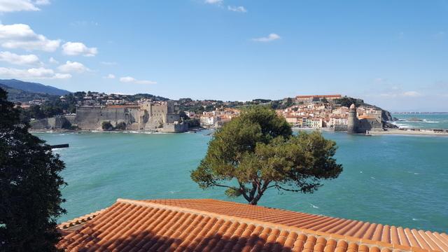 [Autres voyages/France] Balade dans le Perpignanais - Page 3 20210342