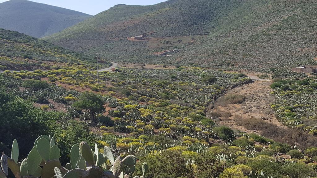 [Maroc/Histoire, Accueil...] HIstoire du téléphérique abandonne de Sidi Ifni 59fcf910