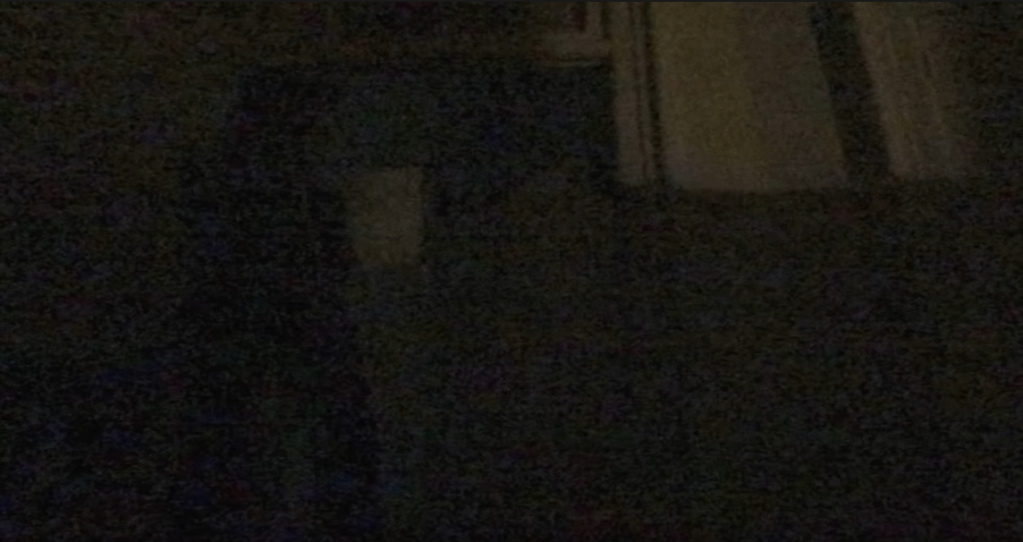 Ouija [Halloween Story] Screen17