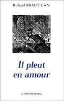Tag poésie sur Des Choses à lire Il_ple10