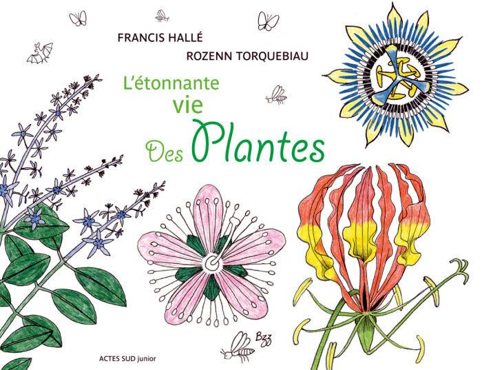 Francis Hallé L_zoto10