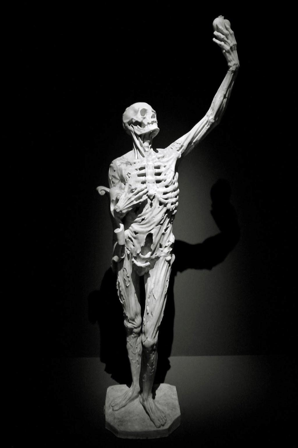 Sculpture Transi10