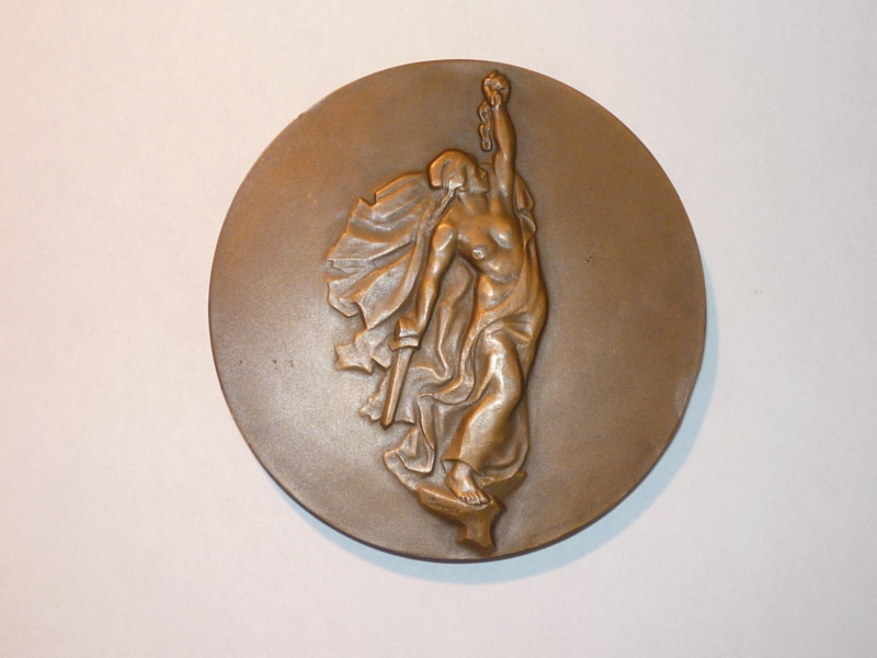 medaillon liberation de la Corse P1050911