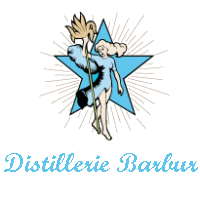 Diversification de la gamme de produits Logo_b12