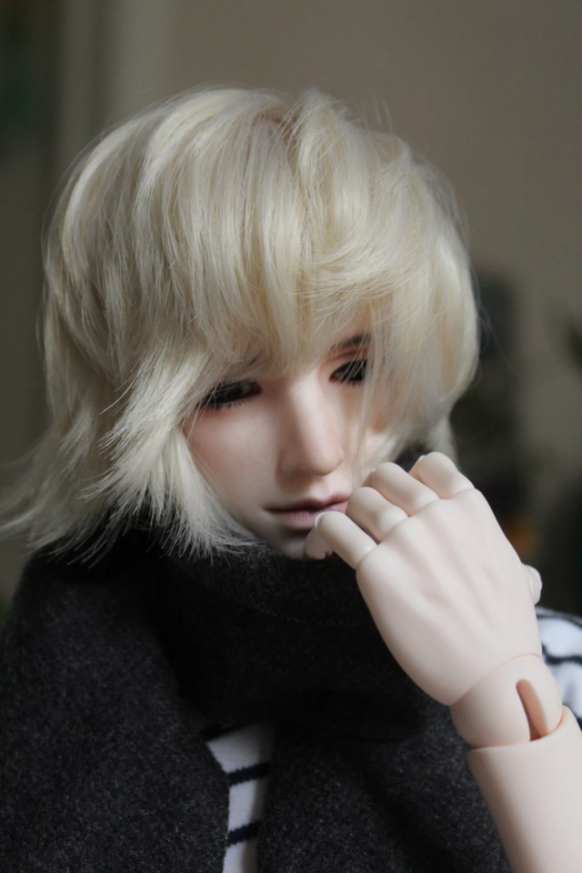 BJD Dimon de Doll Family A  11671010