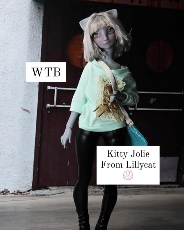 ( RECHERCHE) : Kitty Jolie de Lillycat 19236910