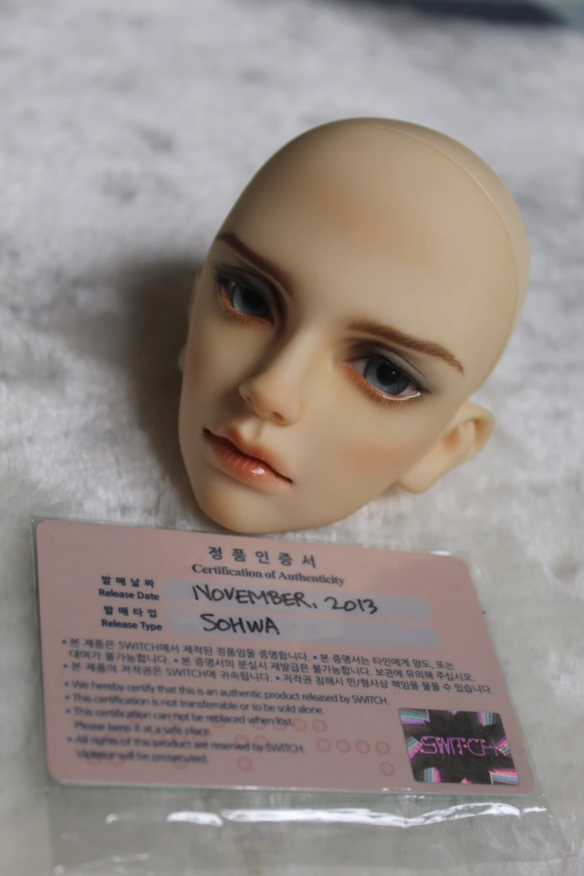 BJD Dimon de Doll Family A  92104611