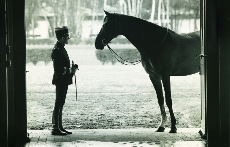 PHOTO : L'Homme et le Cheval… 61723010