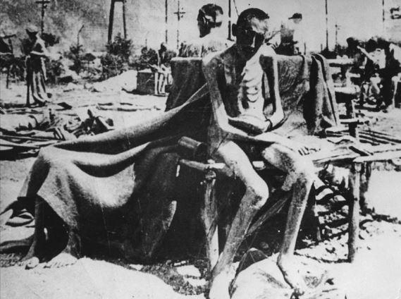 Libération de Camps… Auschw10