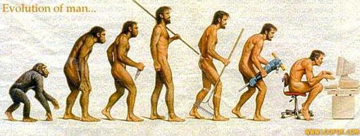 L'homme en quelques chiffres Evolut11
