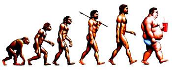 L'homme en quelques chiffres Evolut12