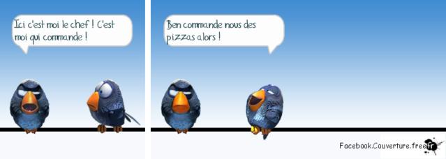 Généraux et stratégies de management                        Pizza10