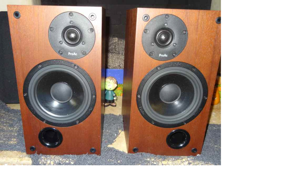 ProAc studio 110 Speakers 212