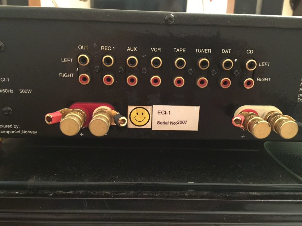 Integrated Amplifier Electrocompanient ECi-1 Class A 100W (sold) 220